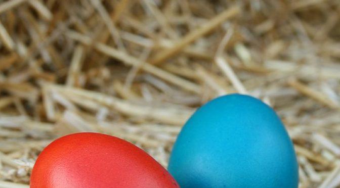Eierhickel-Challenge – Schau Dir die 3 besten Videos an*