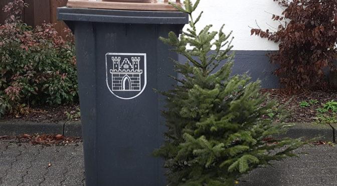 Weihnachtsbaumaktion der Jungschar